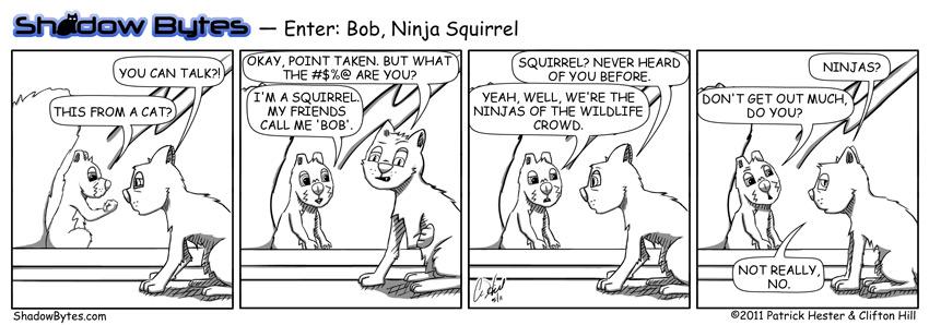 Enter: Bob, Ninja Squirrel